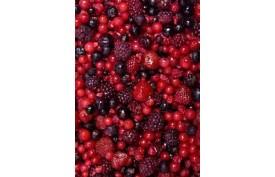 Ovocie- lesná zmes 2,5kg
